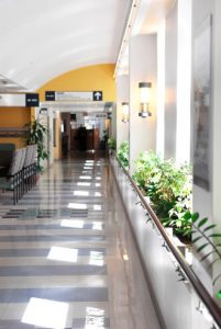 Hospital corridor with ample natural daylight